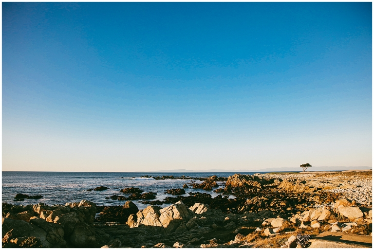 17 Mile Drive Monterey California Photographer